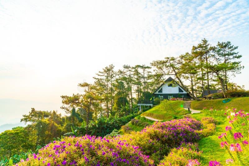Härlig soluppgånghimmel med trädgården på berget på Huai Nam Dang National Park arkivbild