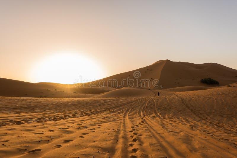 Härlig soluppgångsikt av de ergChebbi dyerna, Sahara Desert, Merzouga, Marocko i Afrika arkivfoton