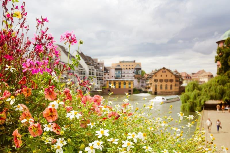 Härlig sommar blommar över europeisk stadssikt royaltyfri foto