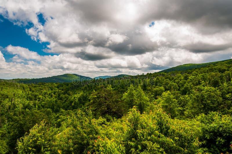 Härlig sommar fördunklar över de Appalachian bergen i den Shenandoah nationalparken fotografering för bildbyråer