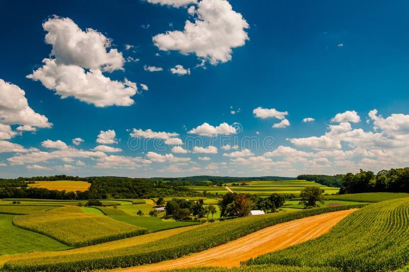 Härlig sommar fördunklar över Rolling Hills och lantgårdfält i ru royaltyfri bild