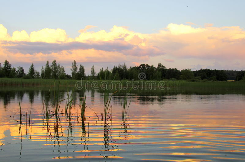Härlig sommarsolnedgång fotografering för bildbyråer