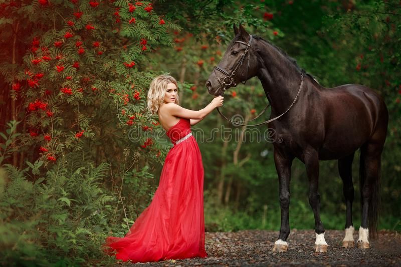 Härlig spenslig blond flicka i röd klänning som kramar en svart häst fotografering för bildbyråer