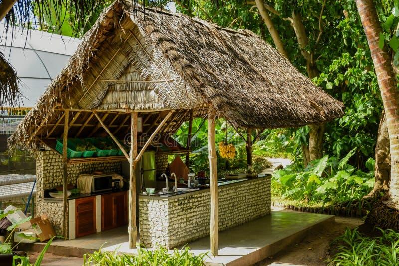 Härlig stång bland djungler på den tropiska ön royaltyfri foto