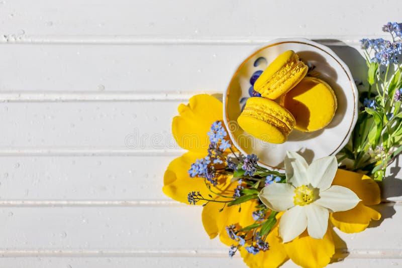 Härlig stilleben med macaronkex och blommor isolerad citronefterrätt kopiera avstånd fransk chokladöken på arkivbilder