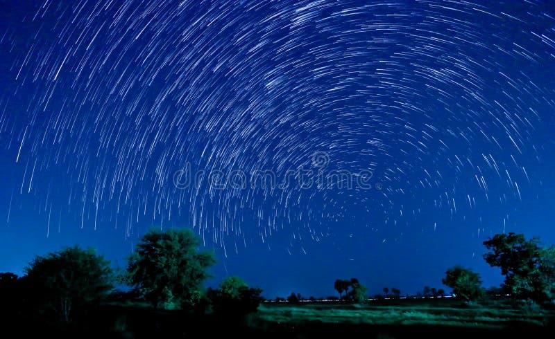 Härlig stjärna fotografering för bildbyråer