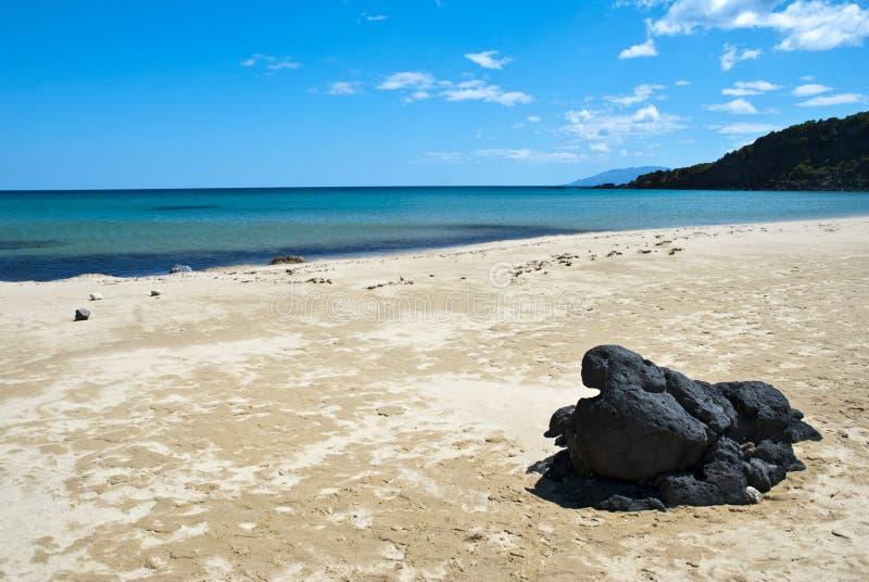härlig strand royaltyfri bild