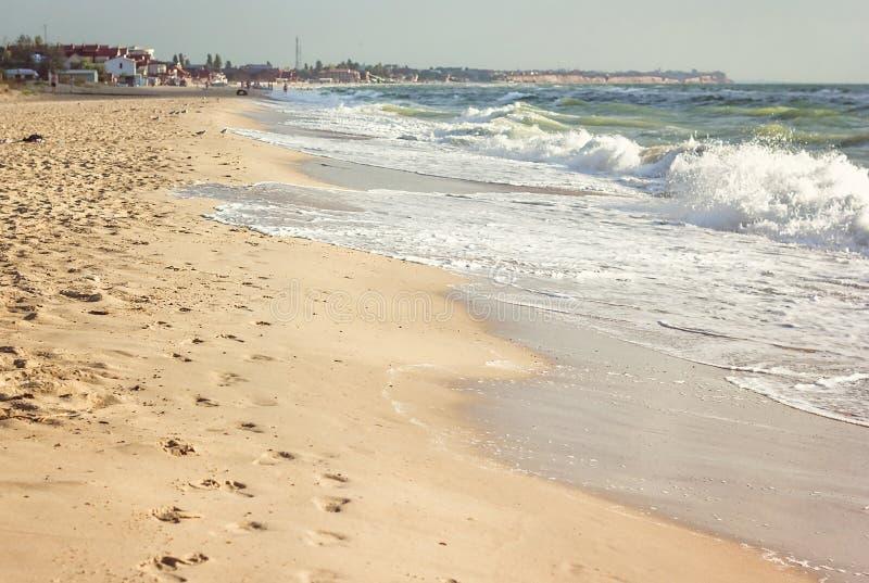 Härlig strand med fotspår på sanden Tom havs- och strandbakgrund med kopieringsutrymme Sjösidastrand Sommarferie och vac arkivbild
