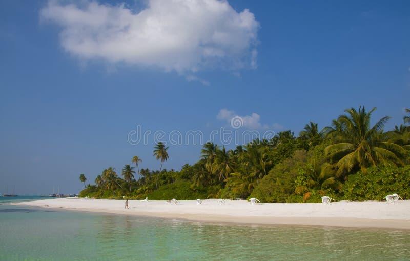 Härlig strand på Meeru, Maldiverna arkivfoto