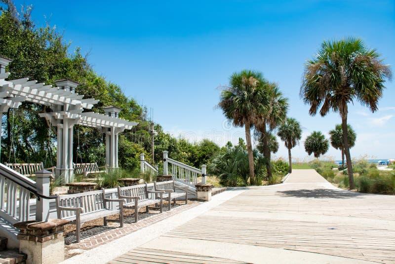Härlig strandpromenad som leder till havet, palmträd längs vandringsledet fotografering för bildbyråer