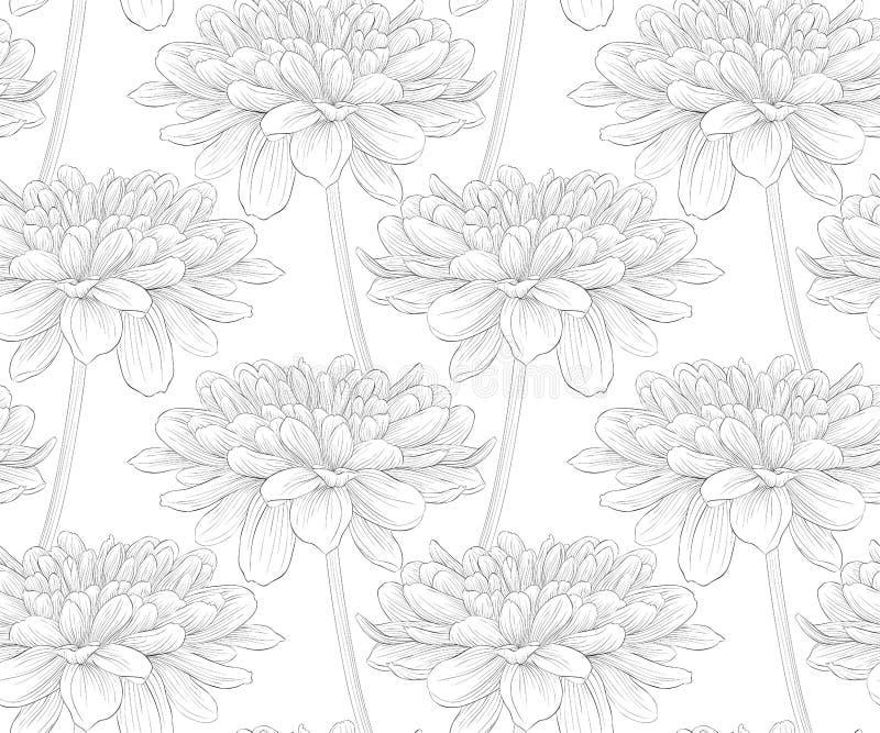 Härlig svartvit sömlös modell i dahlia stock illustrationer
