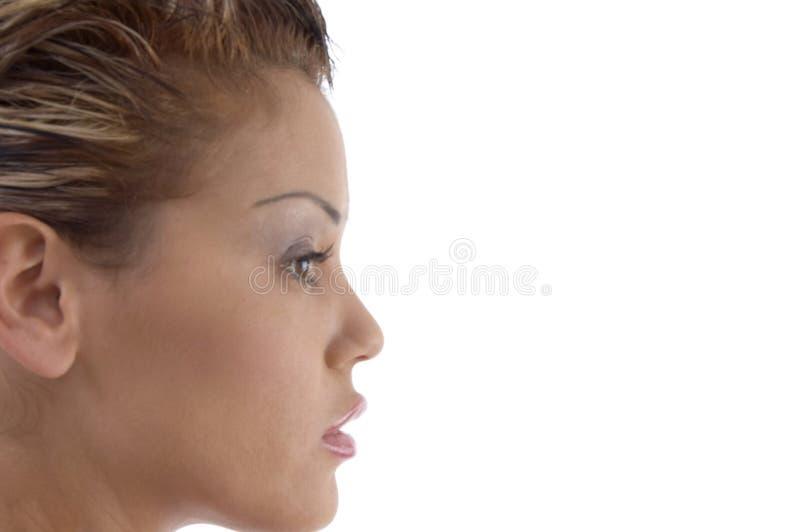 härlig tät kvinnlig upp arkivfoton