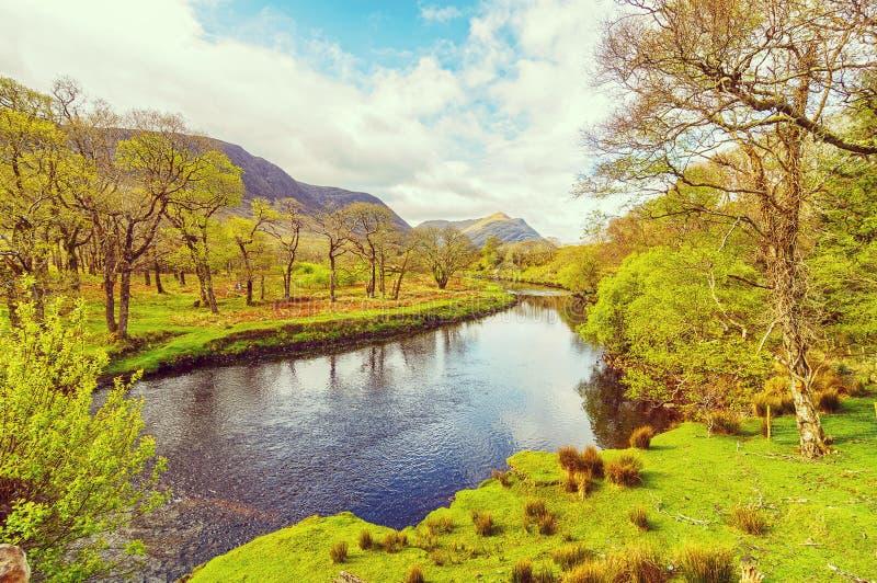 Härlig tappning tonade sceniskt irländskt bygdlandskap för stil från den nordvästliga achillön royaltyfri foto