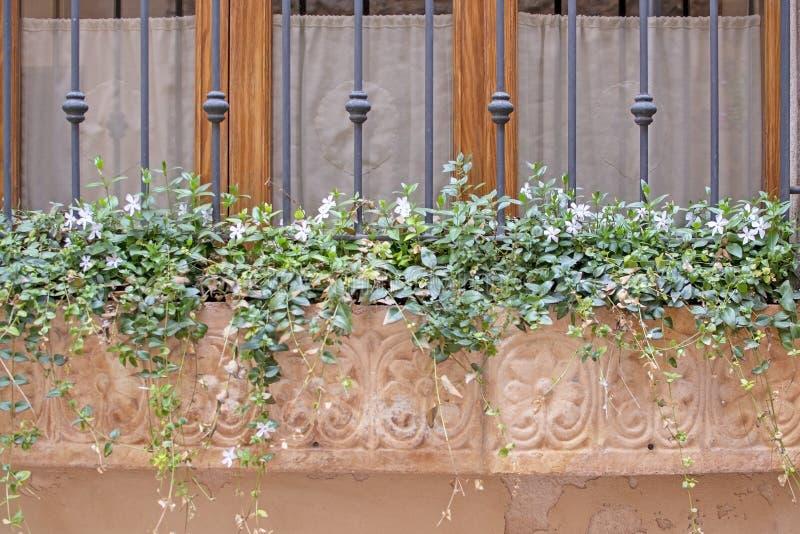 Härlig terrakottablomkruka med att blomstra växter och smidesjärn arkivbild