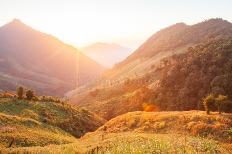 härlig tid Ljust och färgrikt sceniskt landskap Guld- solljussken ner runt om bergen och risfältfälten fantastiskt royaltyfria bilder