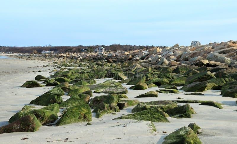 Härlig tidig vårsikt av den Duxbury stranden arkivbilder