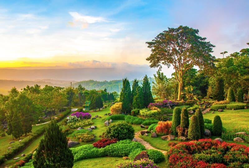 Härlig trädgård av färgrika blommor på kullen royaltyfria foton