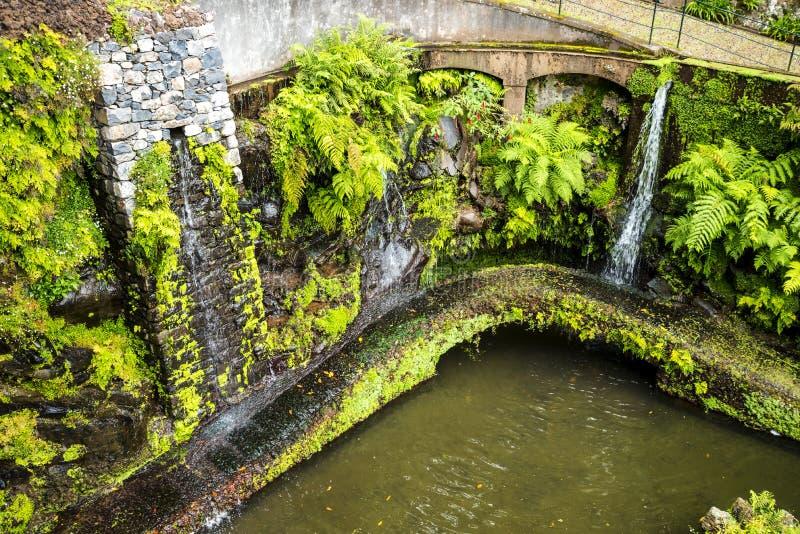 Härlig trädgård på Monte ovanför den Funchal madeiran royaltyfria foton