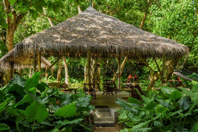 Härlig träkoja bland djungler på den tropiska ön arkivfoto