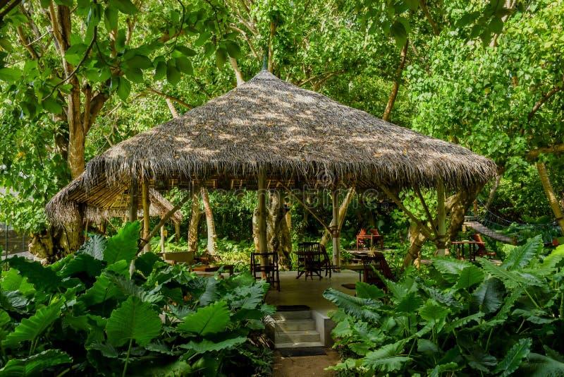 Härlig trärestaurang bland djungler på den tropiska ön royaltyfri fotografi