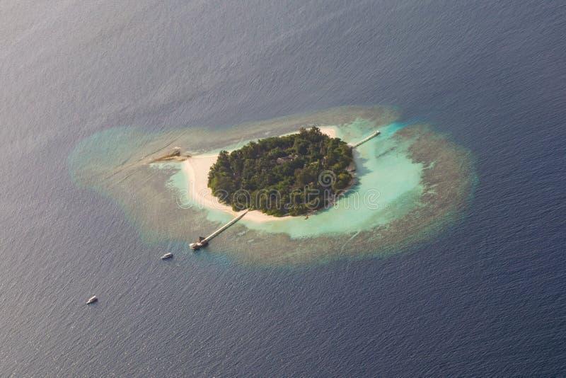 Härlig tropisk ö på den arial sikten för hav från sjöflygplanet på Maldiverna royaltyfria bilder