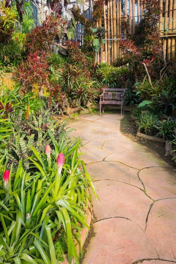 Härlig tropisk asia stil med grön trädgårdidé för röd färg med trästol, konkret trottoar och bambuväggen arkivbild