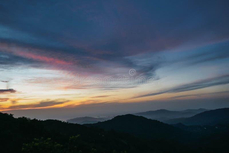 Härlig tropisk djungel på solnedgången royaltyfri fotografi