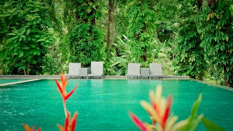 Härlig tropisk semesterort för strandframdelhotell med simbassängen fotografering för bildbyråer