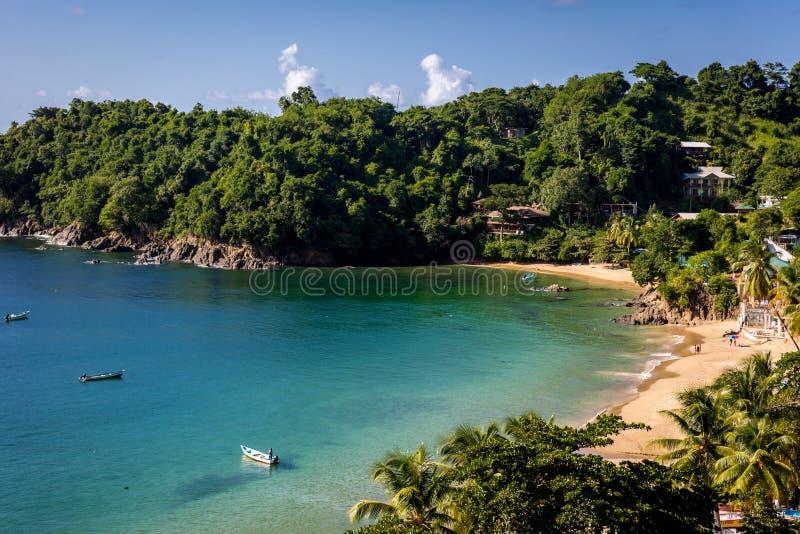 Härlig tropisk strand i Trinidad och Tobago, Caribe - blå himmel, träd, sandstrand, wood fartyg arkivfoton