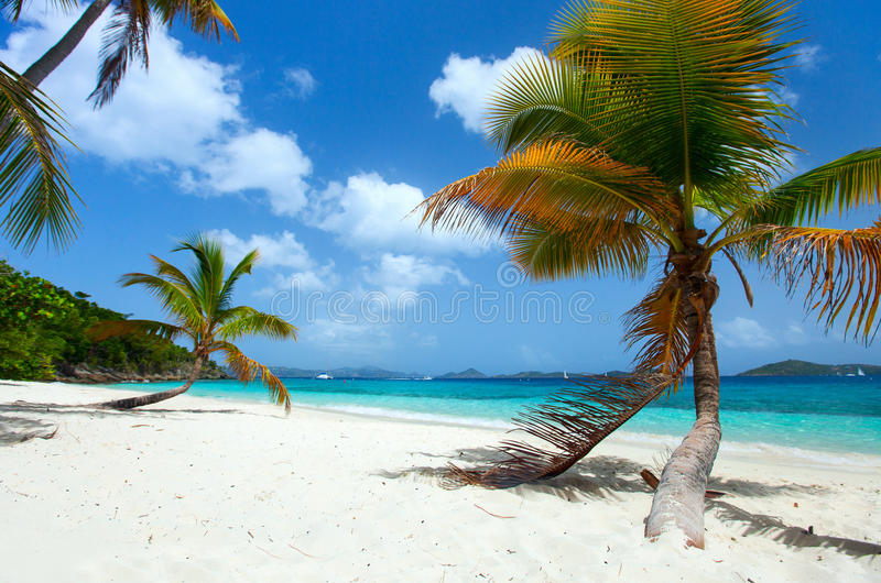 Härlig tropisk strand på karibiskt fotografering för bildbyråer