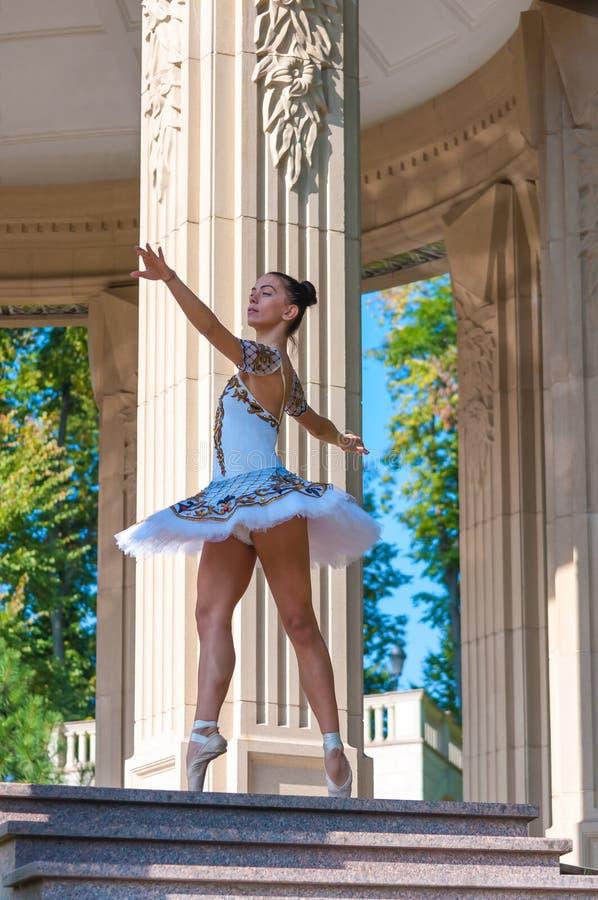 Härlig ung ballerinadans som in står royaltyfria bilder