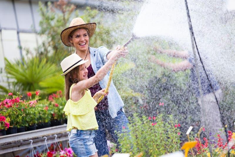 Härlig ung kvinna med hennes dotter som bevattnar växterna med en slang i växthuset royaltyfri foto