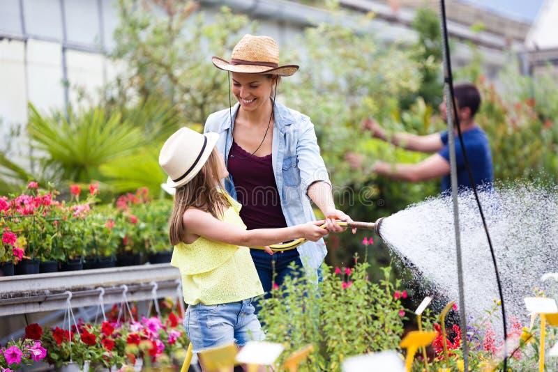 Härlig ung kvinna med hennes dotter som bevattnar växterna med en slang i växthuset arkivbilder