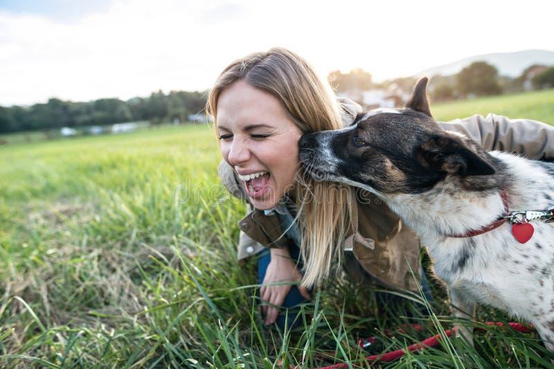 Härlig ung kvinna med hunden i grön solig natur royaltyfri bild