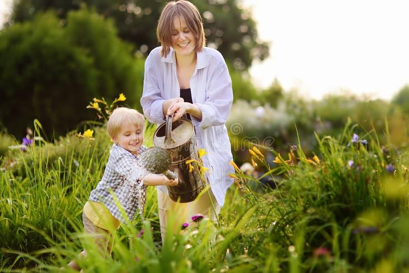 Härlig ung kvinna och hennes gullig son som bevattnar växter i trädgården på den soliga dagen för sommar royaltyfri foto
