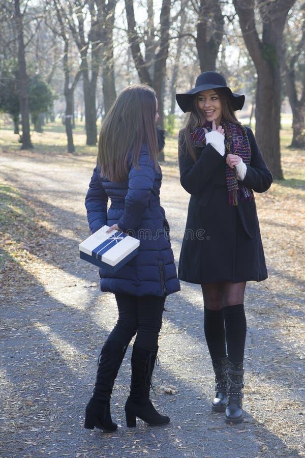Härlig ung kvinna som ger en gåva till hennes vän royaltyfri bild