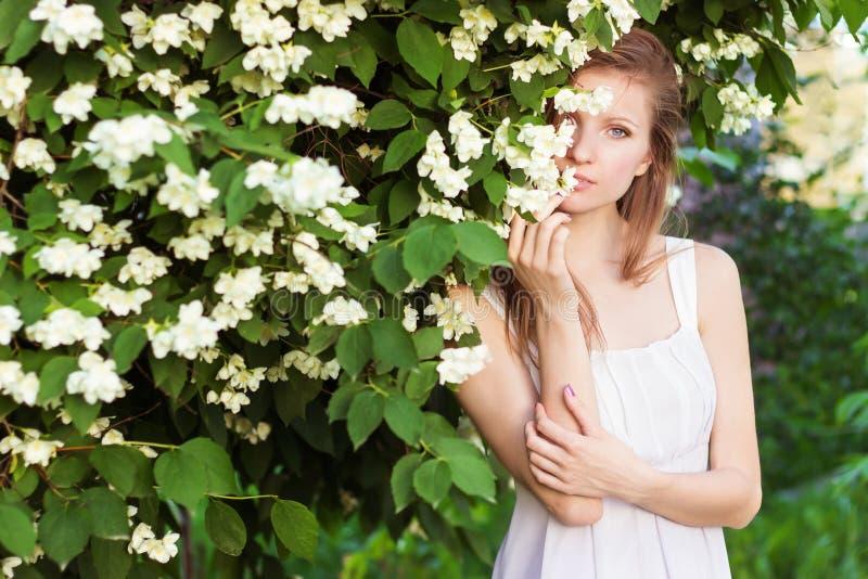 Härlig ung sexig elegant flicka i ett vitt klänninganseende i trädgården nära ett träd med jasmin fotografering för bildbyråer