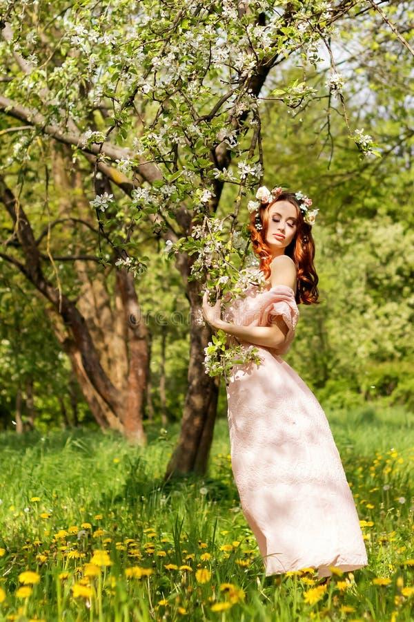 Härlig ung sexig flicka med rött hår nära för Apple för blomningträd anseende fruktträdgård i en rosa klänning royaltyfri fotografi