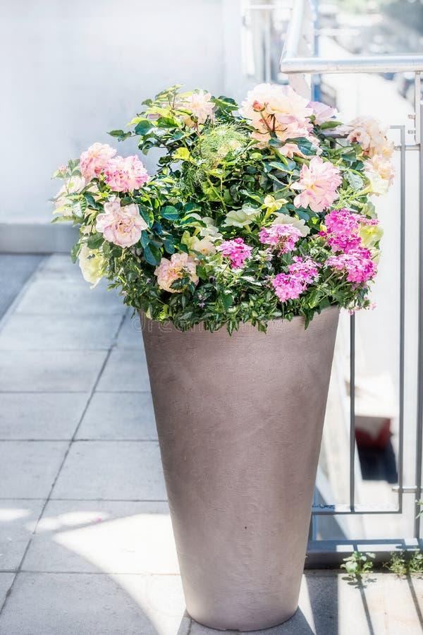 Härlig uteplatskruka med blom- ordningar: rosor, petunior och verbenasblommor på balkong eller terrass Stads- behållareplanter royaltyfri fotografi