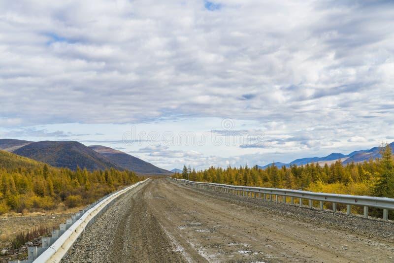 Härlig väg i skogen, höst, Ryssland fotografering för bildbyråer