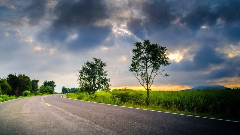 Härlig väg runt om grönt fältBeutifull solljus fotografering för bildbyråer