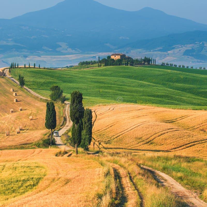 Härlig vår och sommarlandskap med en guld- Tuscany royaltyfria bilder