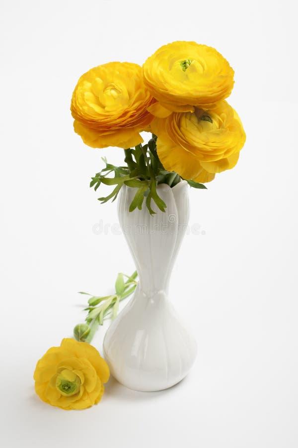 Härlig vårbukett av den gula ranunculusen arkivfoto