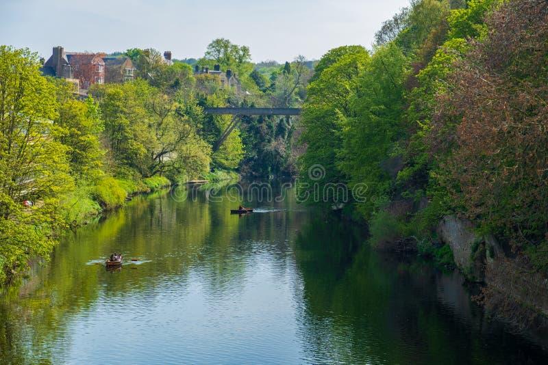 Härlig vårplats av folk som ror i fartyg längs flodkläder i Durham, Förenade kungariket arkivbild