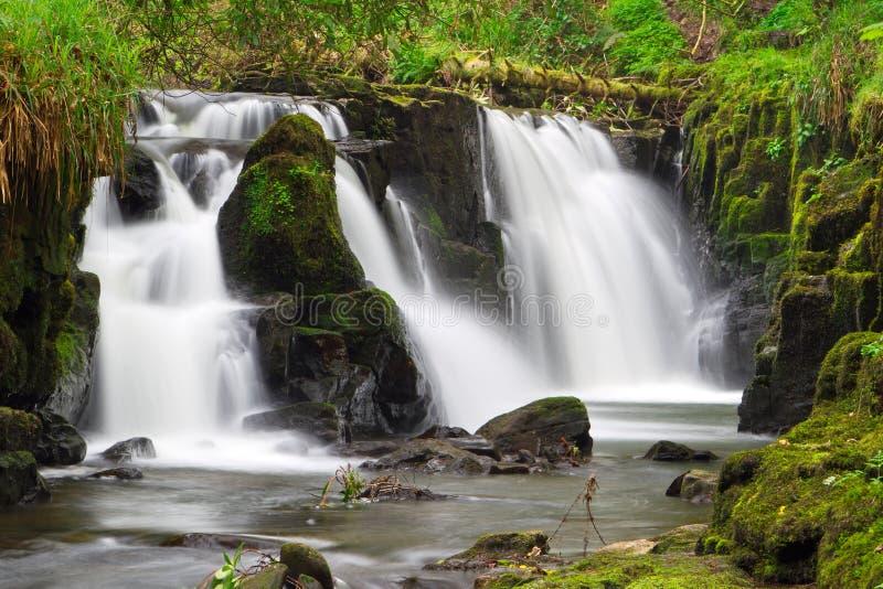 Härlig vattenfall av Clare Glens fotografering för bildbyråer