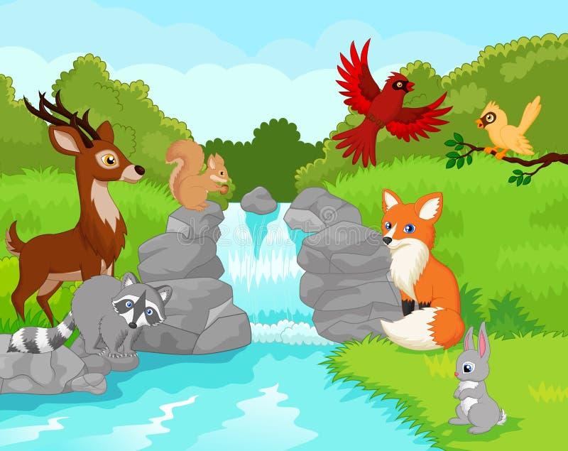 Härlig vattenfall med vilda djur royaltyfri illustrationer
