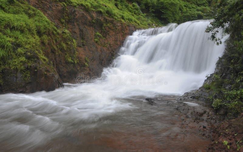 Härlig vattenfall nära Koyna Nagar Satara, Maharashtra, Indien royaltyfri fotografi