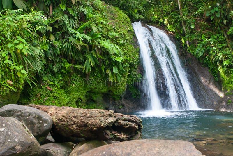 Härlig vattenfall på den Guadeloupe ön arkivfoton