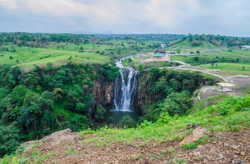 Härlig vattenfallgrässlätt och skog royaltyfri bild