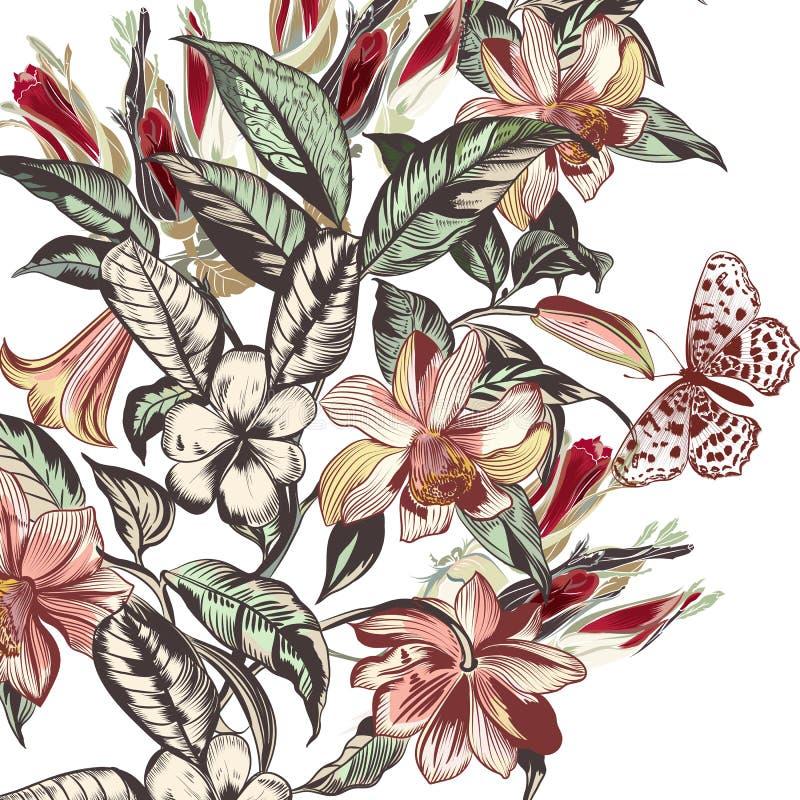 Härlig vektorillustration med tropiska blommor i tappning s royaltyfri illustrationer